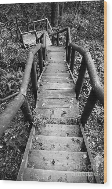 The Way Down Wood Print