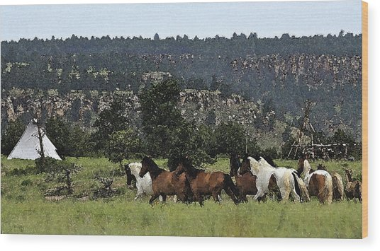 The Wild Mustangs In The Black Hills Wood Print
