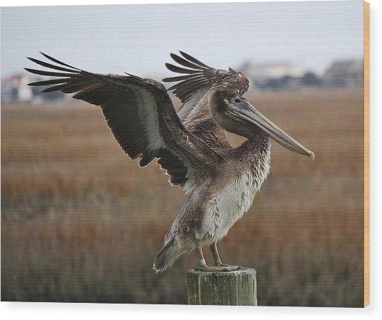 The Wind Beneath My Wings Wood Print by Paulette Thomas