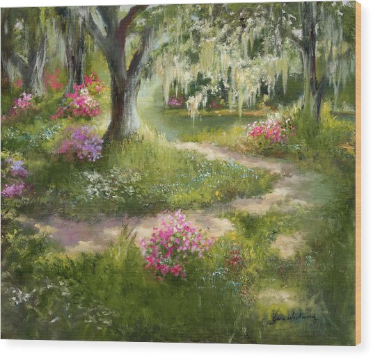 The Winding Path In Spring Wood Print by Jane Woodward