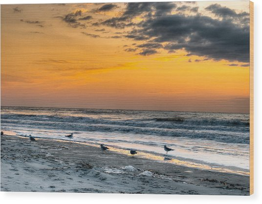 The Wintery Feeling Beach At Sunrise Wood Print