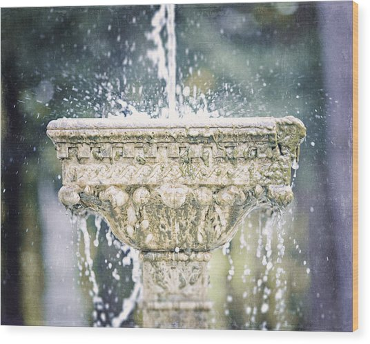 The Yaddo Fountain Wood Print by Lisa Russo