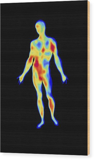 Thermogram Wood Print by Pasieka