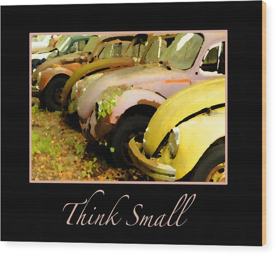 Think Small Wood Print by Nancy Greenland