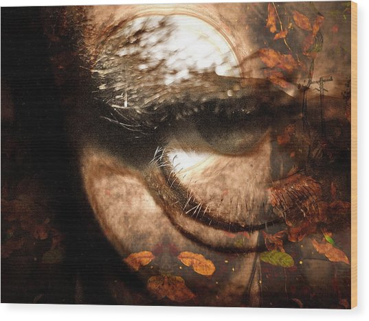 Third Season Wood Print by Beto Machado