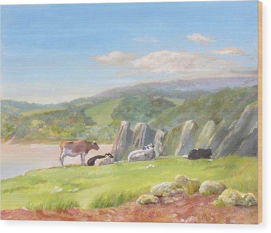 Three Cliffs Bay Gower Wood Print by Maureen Carter