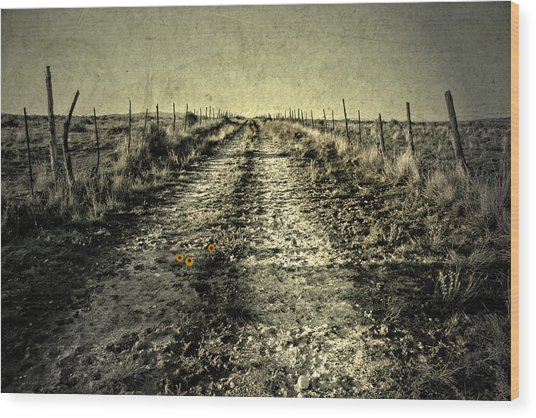 Three Flower Road Wood Print