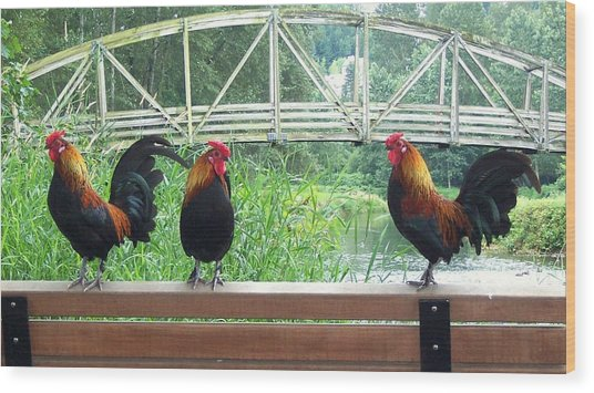 Three Roosters  Wood Print