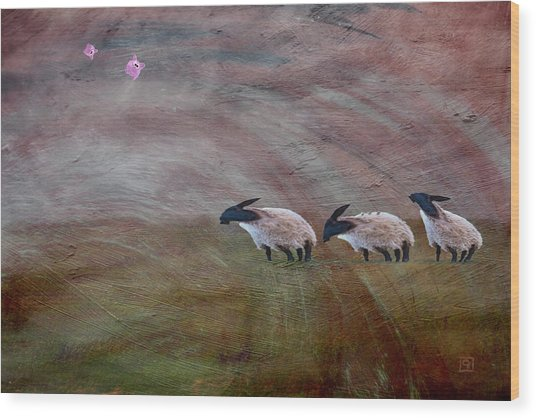 Three Sheep In The Wind And Pigs Fly Wood Print