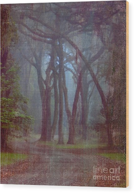 Three Sisters Wood Print