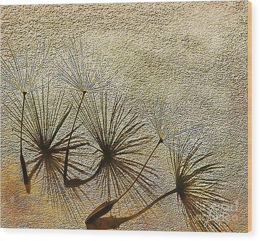 Three Wishes Wood Print