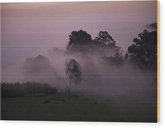 Through The Mist Wood Print