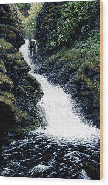Thunderbird Falls Wood Print