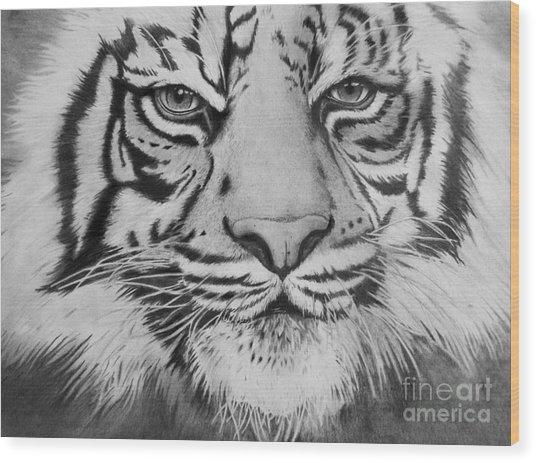 Tiger's Eyes Wood Print