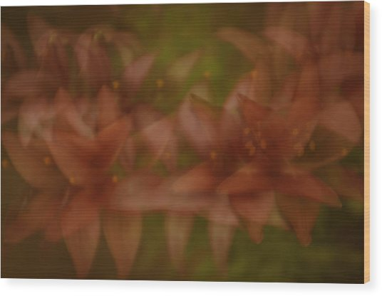Wood Print featuring the photograph Tiny Ghost Lily by Sherri Meyer