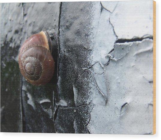 Tiny Vandal Wood Print by Lee Versluis