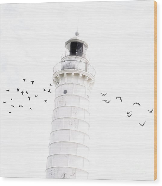 To The Lighthouse Wood Print