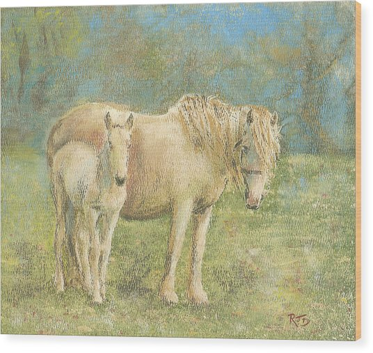Together New Forest Pony And Foal Wood Print