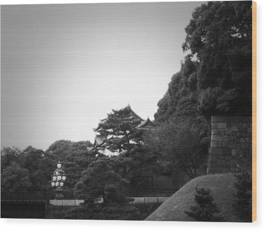 Tokyo Imperial Palace Wood Print