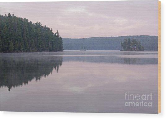 Tom Thomson Lake Vista Wood Print by Chris Hill