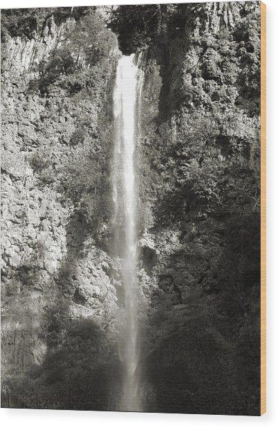 Top Half Multnomah Falls Wood Print