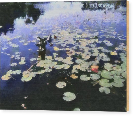 Torch River Water Lilies 3.0 Wood Print
