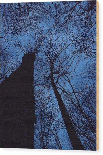 Towering Into The Night Wood Print