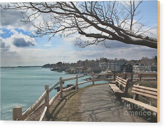 Town Of Marblehead Wood Print