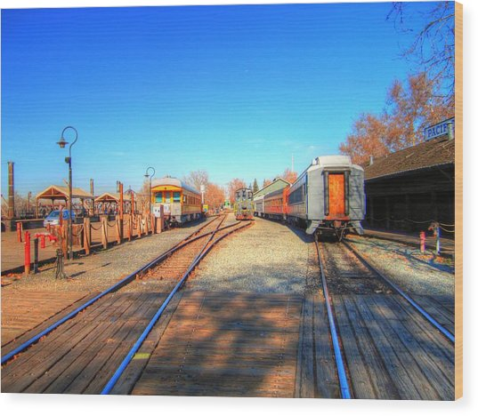 Tracks Along The River-hdr Wood Print by Barry Jones