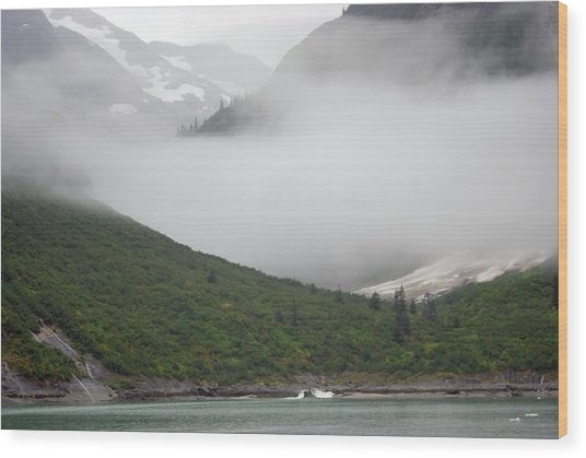Tracy Arm Inlet Wood Print