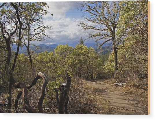 Trail At Cathedral Hills Wood Print