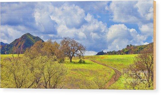 Trail To Nowhere Wood Print