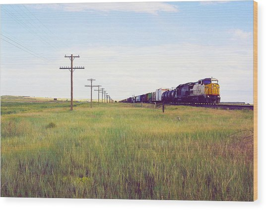 Train And Poles Wood Print by Trent Mallett