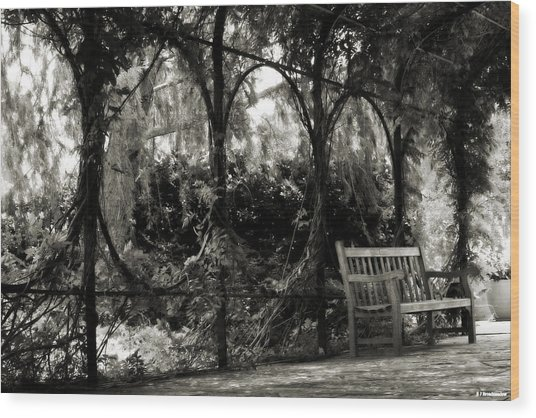 Tranquil Leaf Covered Walkway In Black And White Wood Print