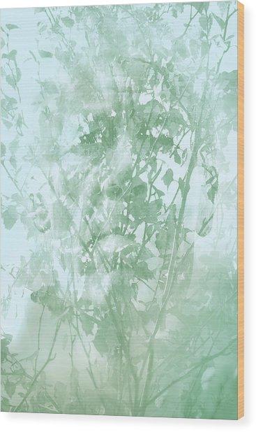 Transient Wood Print