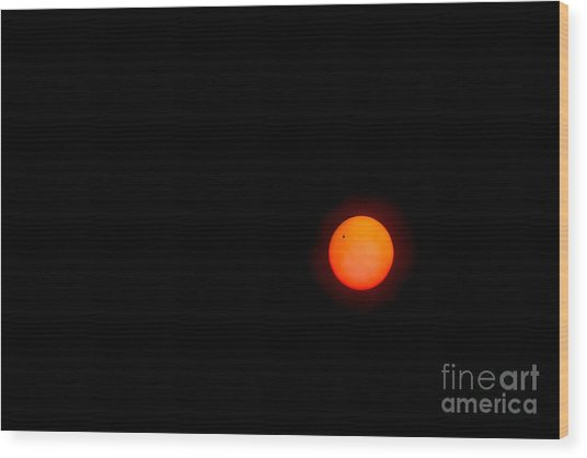 Transit Of Venus 2012 Wood Print
