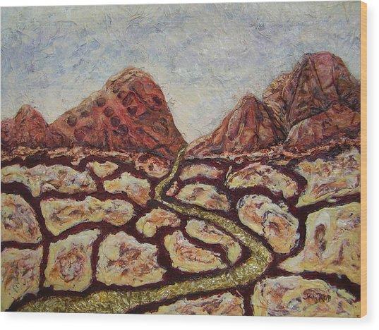 Treasures Of Copper Canyons Wood Print by Jan Reid