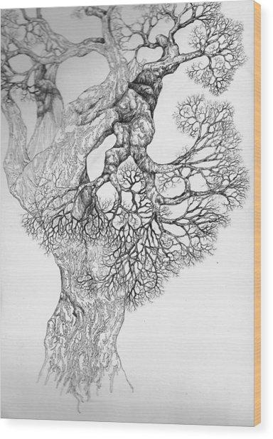 Tree 21 Wood Print