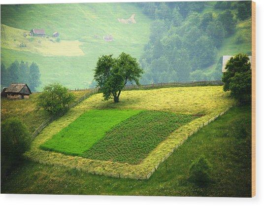 Tree And Field Wood Print