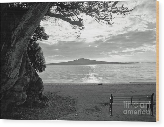 Tree And Ocean And Bench And Volcano Wood Print