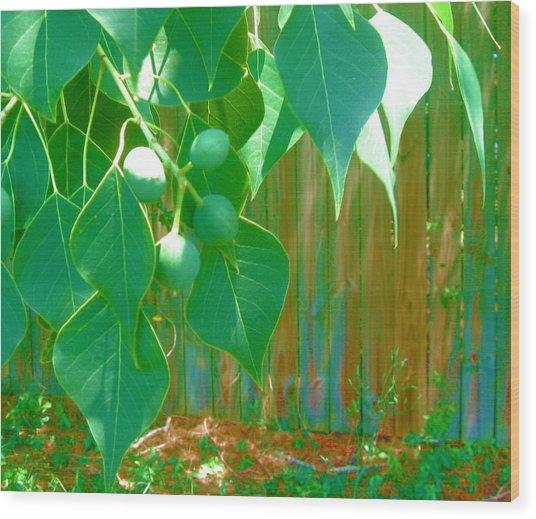 Tree Leaves Wood Print by Juliana  Blessington