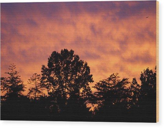 Tree Lined Skies Wood Print