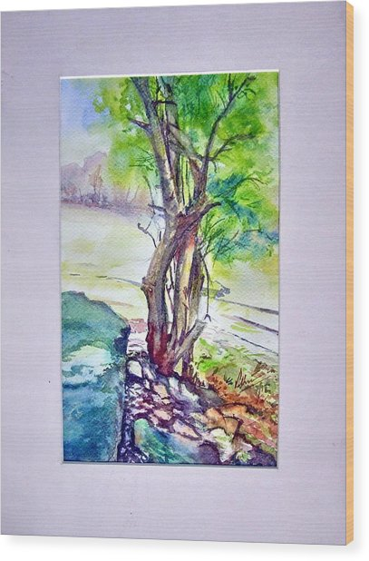 Tree Near Rock Wood Print
