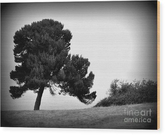 Tree Wood Print by Nicky Dou