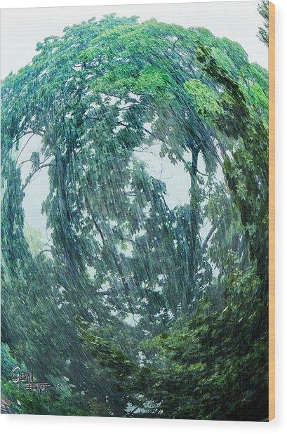 Tree Swirl Heavy Rain  Wood Print
