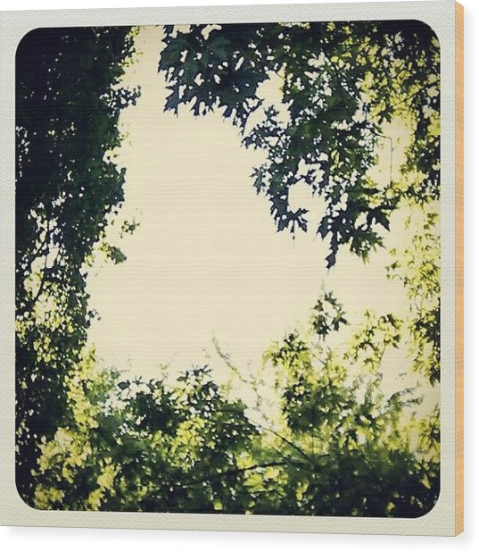 #trees #green #sky #pattern #style Wood Print by My Mcwp