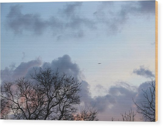 Trees On The Background Of A Cloudy Sky At Twilight Wood Print by Gal Ashkenazi