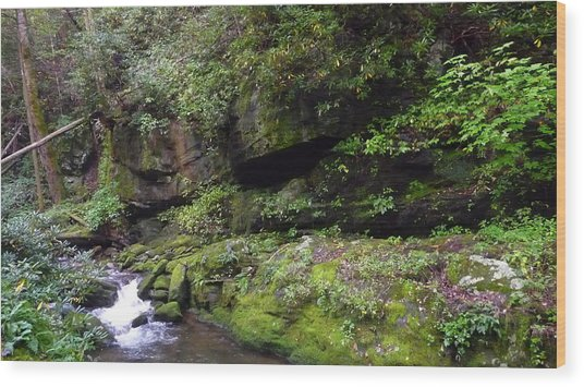 Trickle Of Green Wood Print by Michael Carrothers