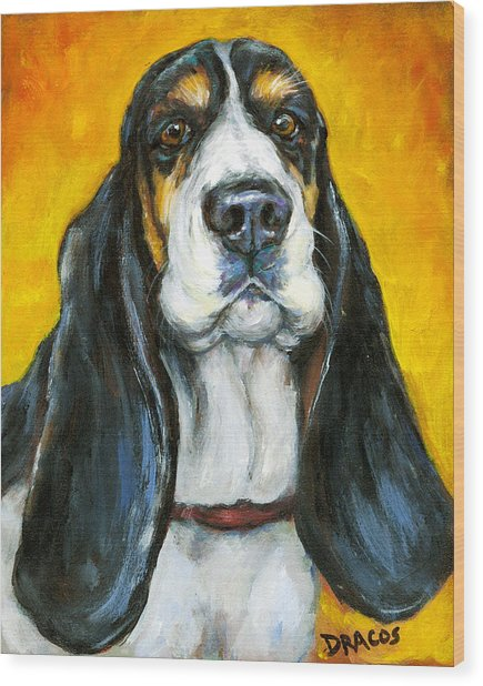Tricolored Basset Hound On Gold Wood Print by Dottie Dracos