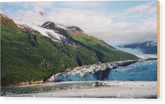 Trip To Glacier Bay Wood Print